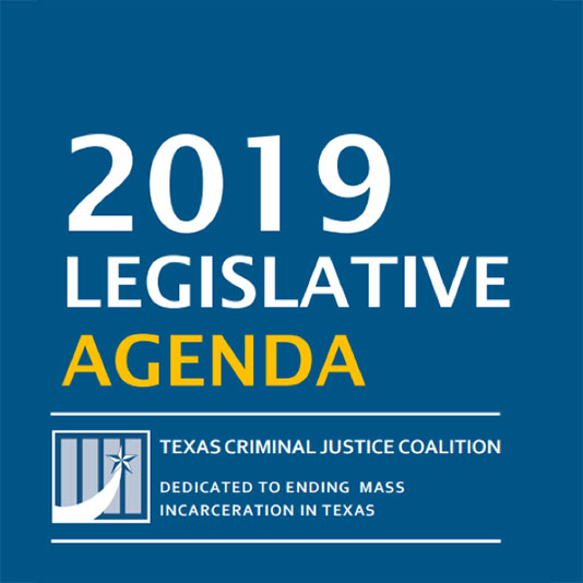 Our Progress in 2019 | Texas Criminal Justice Coalition